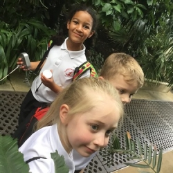 """copthorne-prep-year-3-kew-gardens-35 • <a style=""""font-size:0.8em;"""" href=""""http://www.flickr.com/photos/153285254@N08/26029260857/"""" target=""""_blank"""">View on Flickr</a>"""