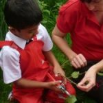 Copthorne PrePrep - Year 1 - Making Charcoal - May 2017