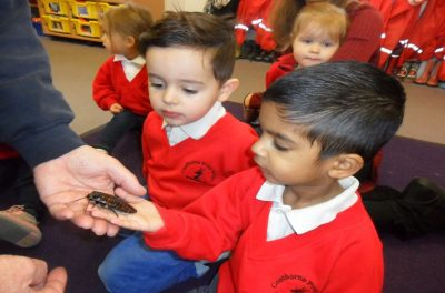 Copthorne Prep School Coach House Nursery Natural World Minibeasts visit