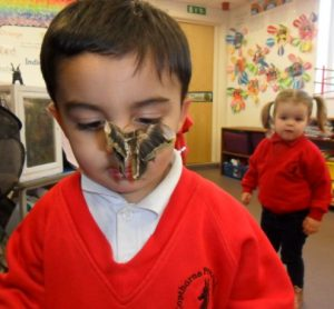 Copthorne Prep School Coach House Nursery Natural World Minibeasts visit - moths - Feb 2017